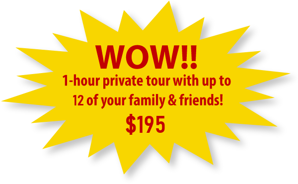 1-hour private tour with up to 12 of your family & friends! $150